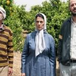 Los Limoneros, entre Israel y Palestina
