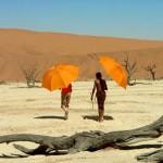 Viaje mágico a África, fantasía en 3D
